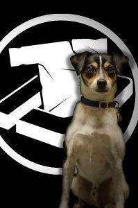 Doggy/Diego